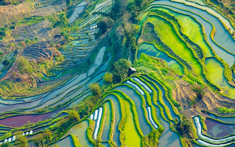 China's Top 7 Places for Spring Photography