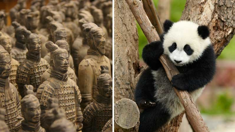 Terracotta Army and Pandas