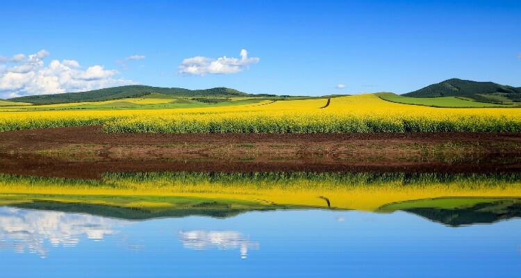 Lakes in Hulunbuir Grassland