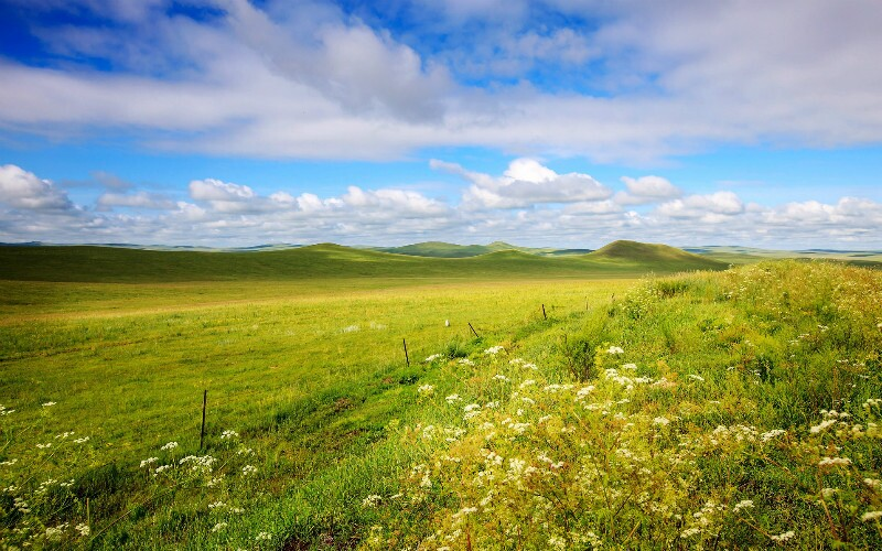 Top Things to Do in Inner Mongolia