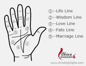 palmistry, palm reading lines, the five palm lines