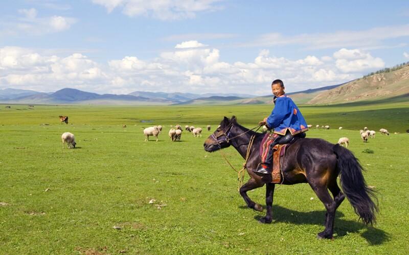 Inner Mongolia Naadam Festivals — Mongol Grassland Sports and Feasting