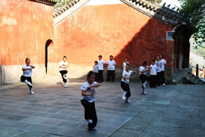 Kung Fu vs Karate vs Taekwondo