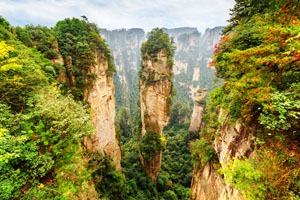 Zhangjiajie National Forest Park in autumn