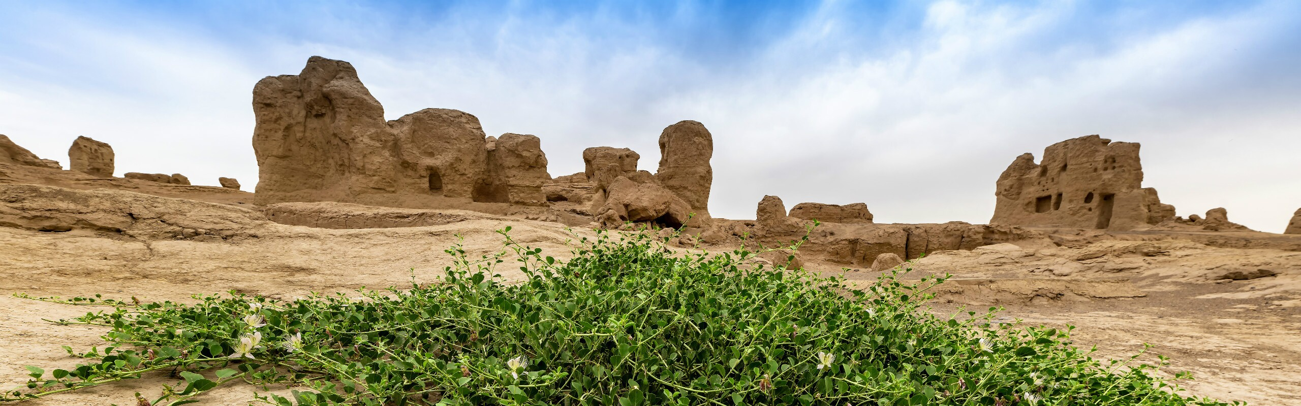 Tour Along the Great Silk Road