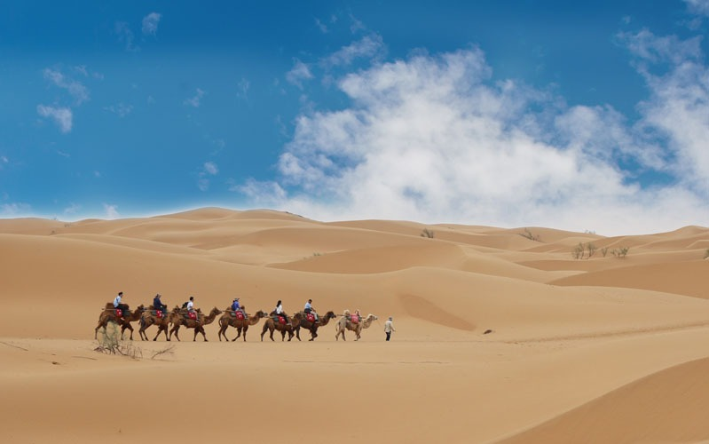 Top 10 Things to Do in Ningxia