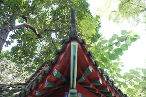 Traditional Chinese Roofs China S Roof Architecture