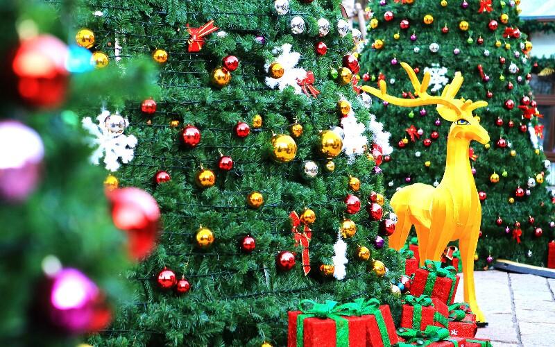 Christmas in Shanghai 2020- Markets, Meals, Bars, Churches