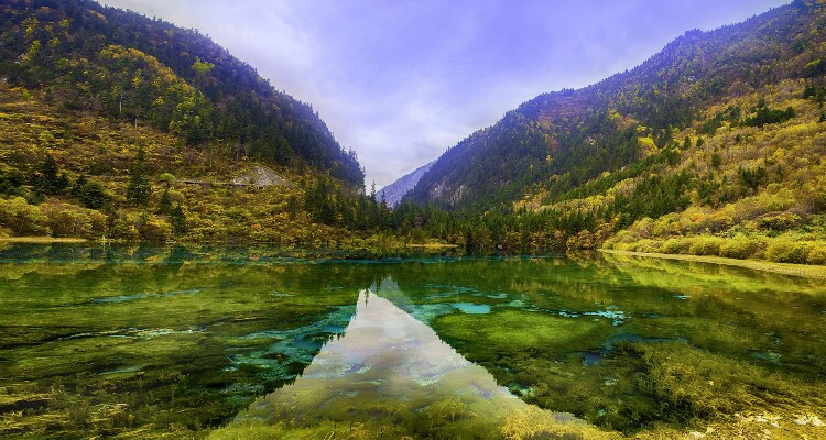 The Fall Colors of the Lake in Jiuzhaigou