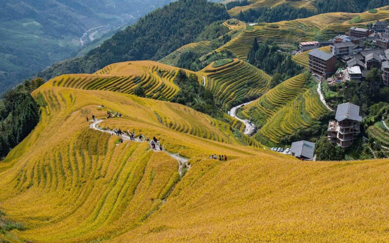 Best Places to See Autumn Colors in Guilin