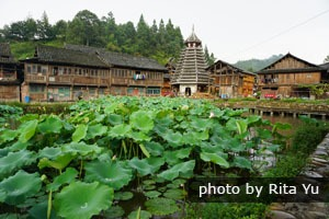 Admire the culture and nature of Guizhou