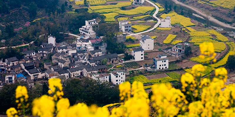 wuyuan china, a best place to visit in march china