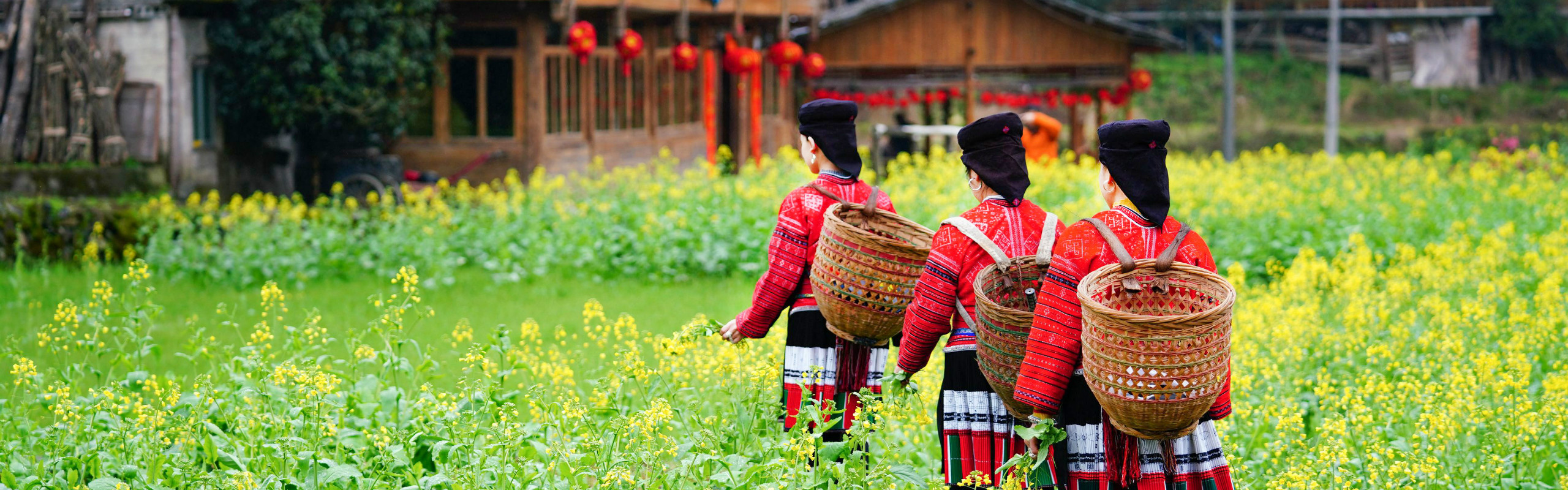 6-Day Guilin, Yangshuo and Longsheng Tour