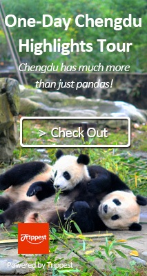 chengdu day tour