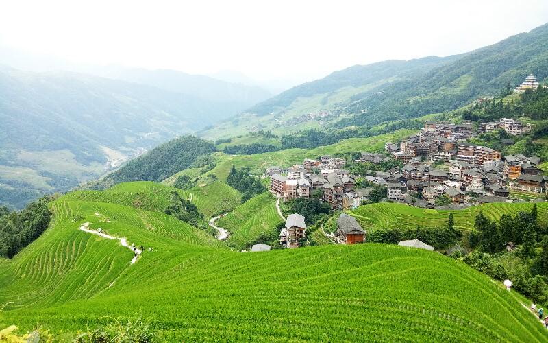 Longji Ping'an Terraced Fields