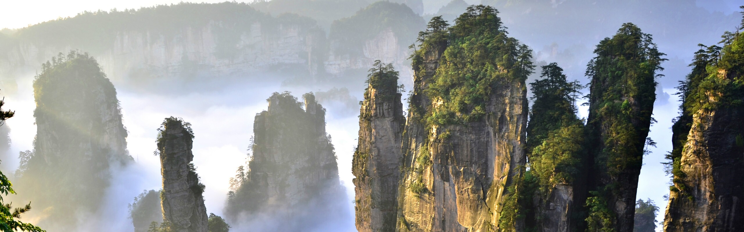 1 Day The Best of Wulingyuan Tour