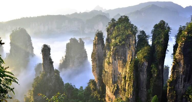 Peaks in Zhangjiajie National Park