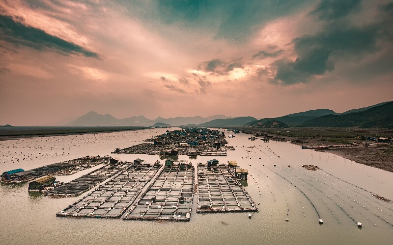 Xiapu's Mudflats and Traditional Countryside Life