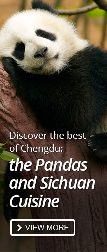 the best of chengdu