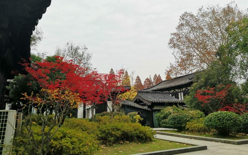 Nanjing International Plum Blossom Festival