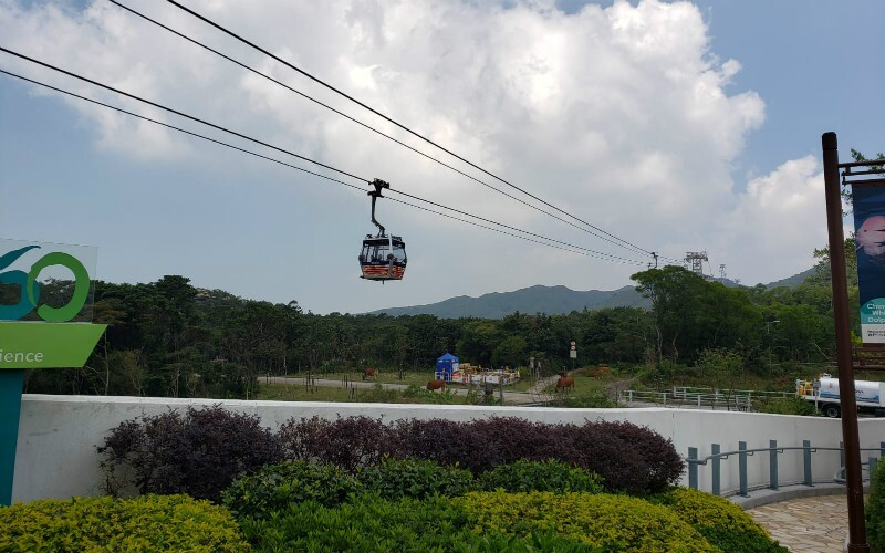 The Ngong Ping 360 Cable Car - Travel Tips, Tour Plan