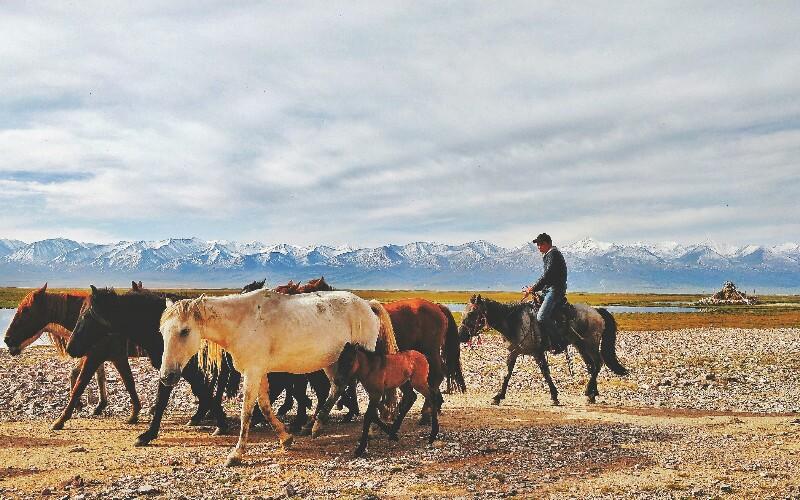 Xinjiang Transport