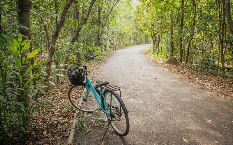 The Five Best Mountain Bike Tracks in Hong Kong