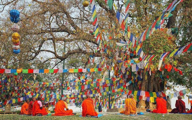 Buddha's Sermon Festival
