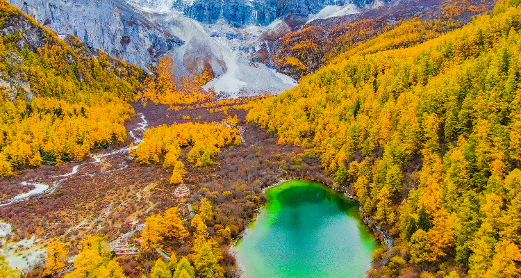 the green lake and forest