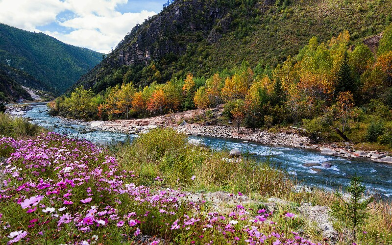 Daocheng Weather - Best Time to Visit Daocheng