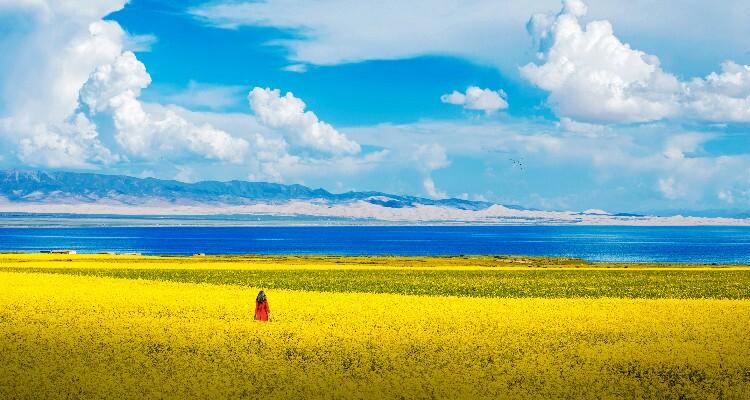 Miraculous Qinghai Lake