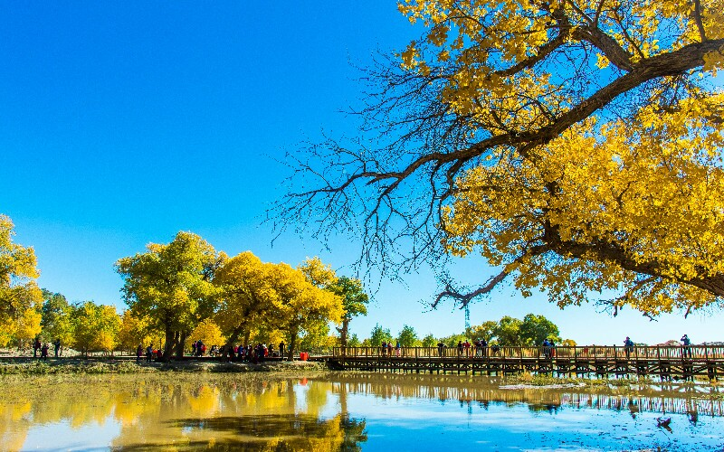The Top 7 Places to Visit in Autumn in China