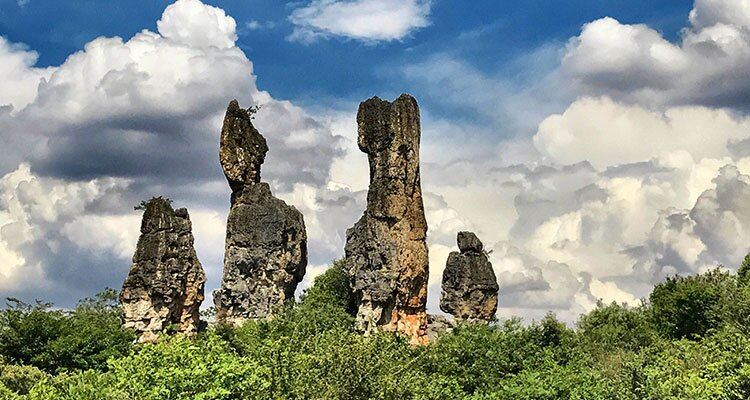 the stones in stone forest