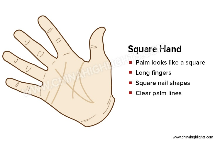The Square Hand in Palm Reading