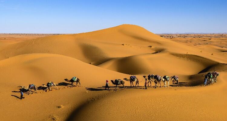 Inner Mongolia Desert