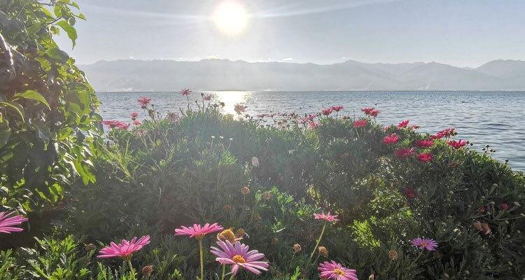 the view of Erhai Lake
