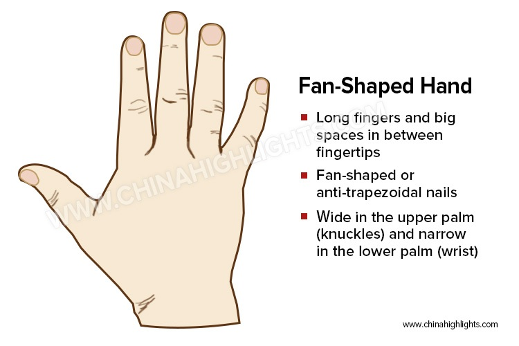 The Fan-Shaped Hand in Palm Reading