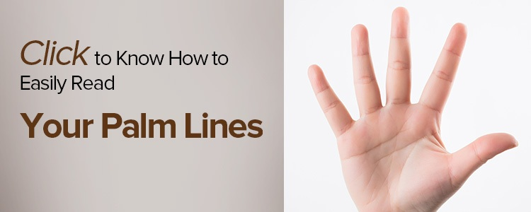 Palm Lines Reading