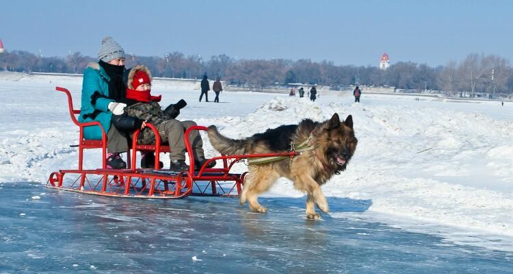 Harbin Ice & Snow World