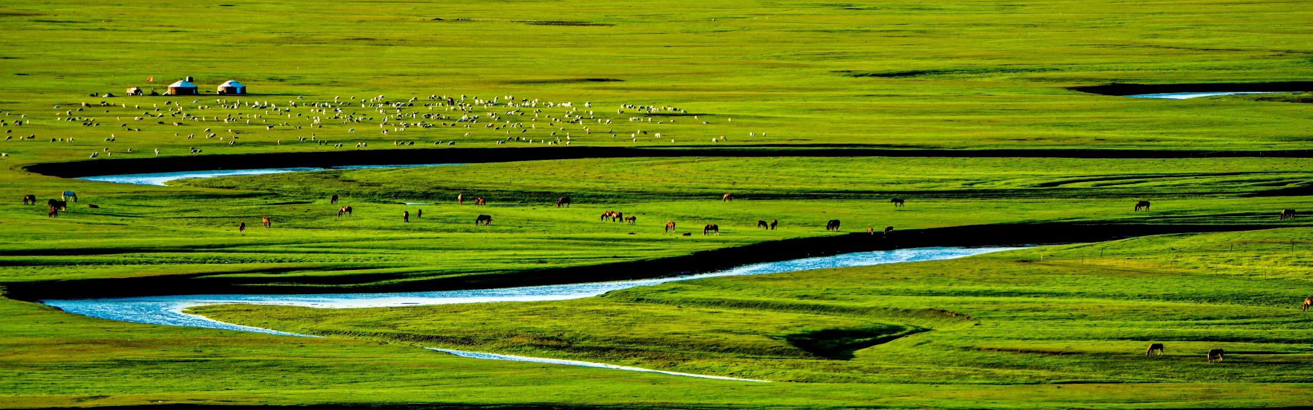 Inner Mongolia Tours