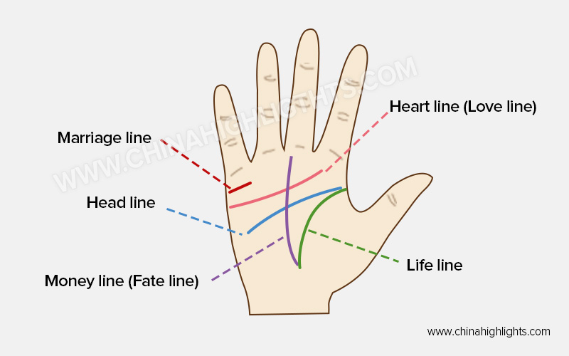 Palm Reading Guide: How to Read Your Palm Lines with Chart