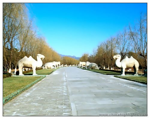 The Sacred Way of the Ming Tombs