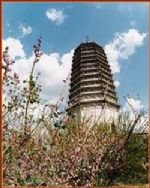 Nongan Ancient Pagoda