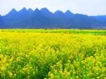 Guilin and Daxu Spring Tour