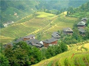 Longji Terrace