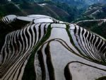 Photos of Longsheng Terraced Field & Yangshuo Combo
