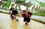 Photos of Guilin Minority Culture Discovery Tour