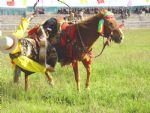 Photos of Tibetan Nagqu Horse Race Festival