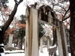 Confucian family graveyard