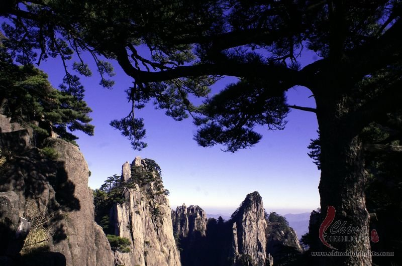 Huangshan Travel Tips